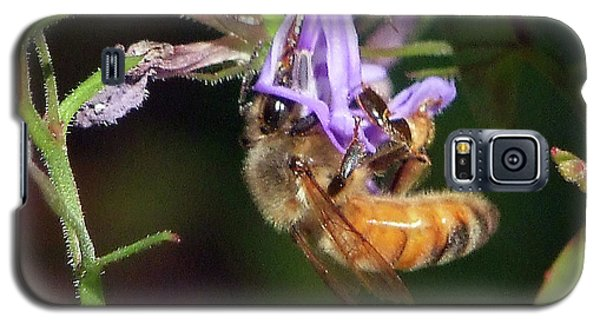 Galaxy S5 Case featuring the photograph Bee With Flower by Ron Roberts