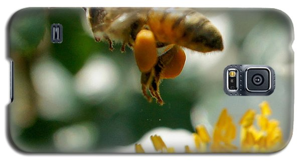 Galaxy S5 Case featuring the photograph Bee's Feet Squared by TK Goforth
