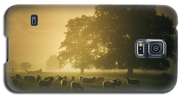 Before Dawn Gathering Galaxy S5 Case by Chris Fletcher