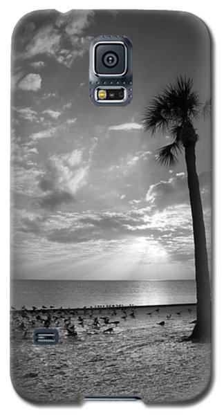 Before Sunset Galaxy S5 Case