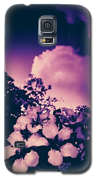 Before The Storm Galaxy S5 Case