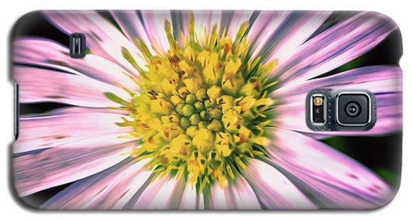 Begger's Tick Galaxy S5 Case