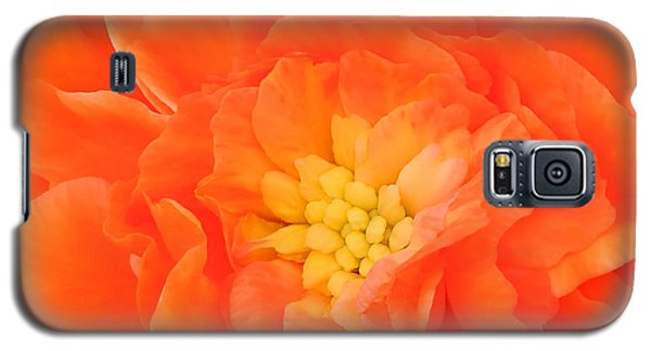 Galaxy S5 Case featuring the photograph Begonia by Sami Martin