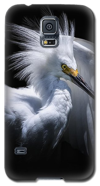 Behind The Curtain Galaxy S5 Case