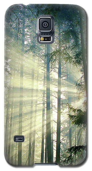 Behold The Light In The Fall Forest Galaxy S5 Case