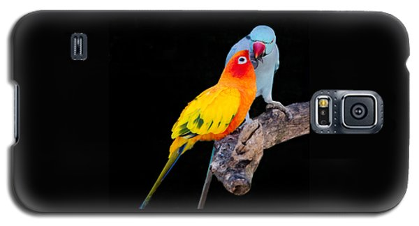 Sun Conure And Ring Neck Parakeet 2 Galaxy S5 Case