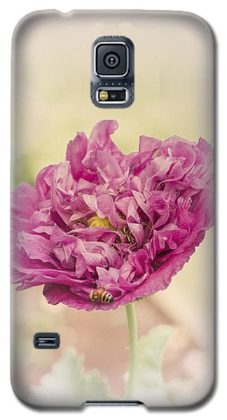Belinda Galaxy S5 Case