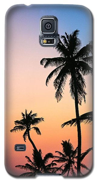 Belize Palms Galaxy S5 Case