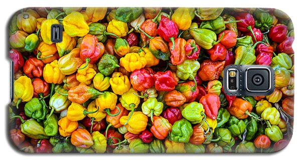 Belize Peppers II Galaxy S5 Case