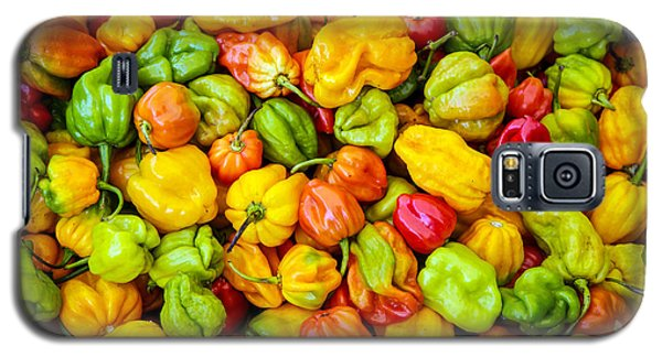 Belize Peppers Galaxy S5 Case
