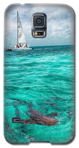 Belize Turquoise Shark N Sail  Galaxy S5 Case