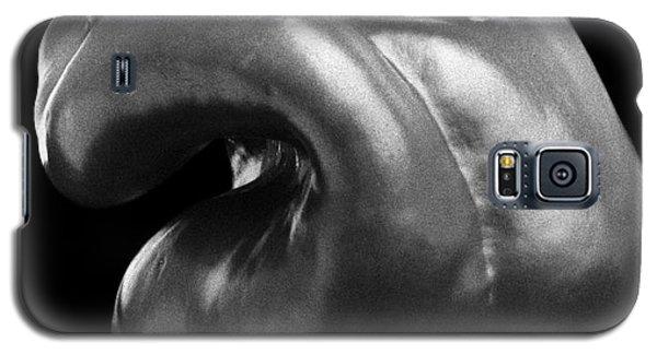 Bell Pepper 0002 Galaxy S5 Case