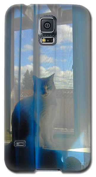 Bella Vista Galaxy S5 Case