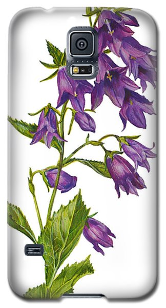 Bellflower - Campanula Galaxy S5 Case