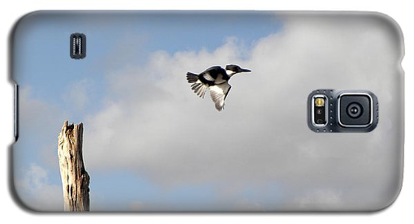 Belted Kingfisher In Flight Galaxy S5 Case