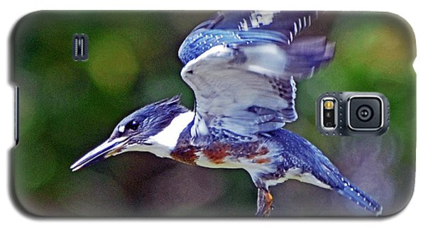 Galaxy S5 Case featuring the photograph Belted Kingfisher by Rodney Campbell