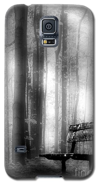 Bench In Michigan Woods Galaxy S5 Case
