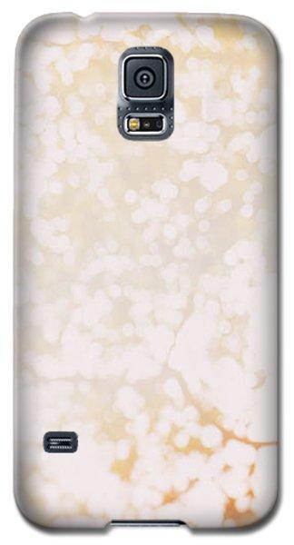 Beneath A Tree 14 4948 Triptych Set 1 Of 3 Galaxy S5 Case