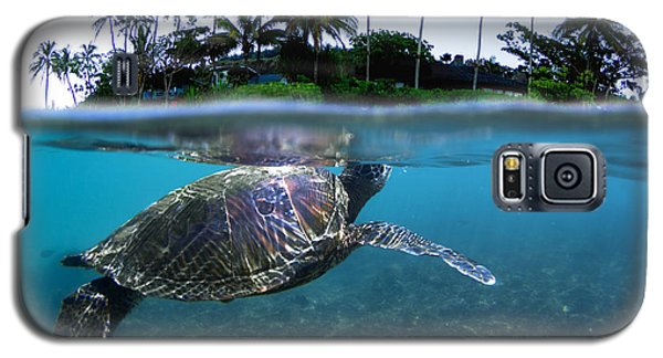 Beneath The Palms Galaxy S5 Case by Sean Davey