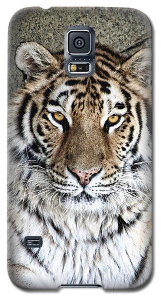Tiger Galaxy S5 Case - Bengal Tiger Vertical Portrait by Tom Mc Nemar