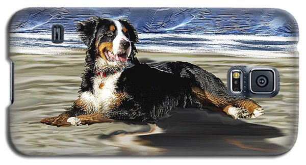 Bernese Mountain Dog Galaxy S5 Case