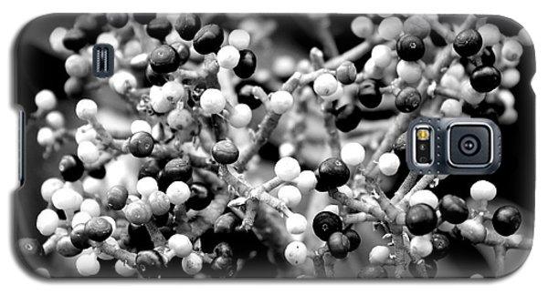 Berries Galaxy S5 Case