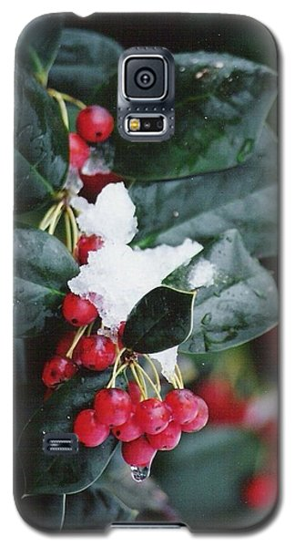 Berries In The Snow Galaxy S5 Case