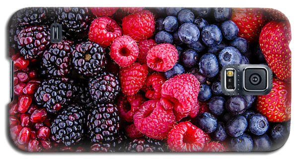 Berry Delicious Galaxy S5 Case