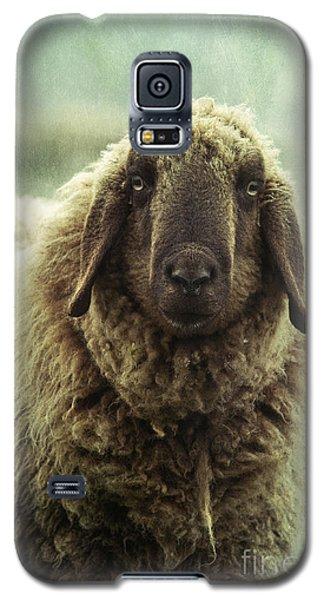 Sheep Galaxy S5 Case - Besch Da Pader by Priska Wettstein