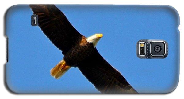 Best Bald Eagle On Blue Galaxy S5 Case