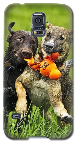 Galaxy S5 Case featuring the photograph Best Friends 2011 by Joan Davis