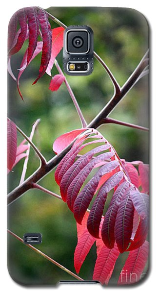 Galaxy S5 Case featuring the photograph Best Red Dress Art Print By Penny Hunt by Penny Hunt