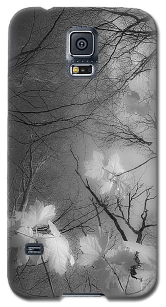 Between Black And White-02 Galaxy S5 Case