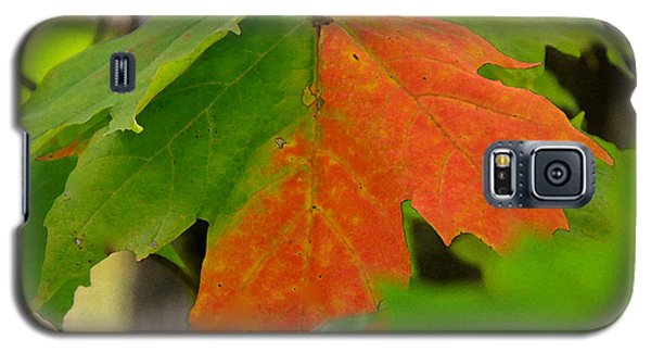 Galaxy S5 Case featuring the photograph Between Seasons by Susan Crossman Buscho
