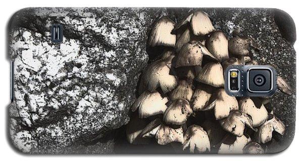 Between The Rocks Galaxy S5 Case