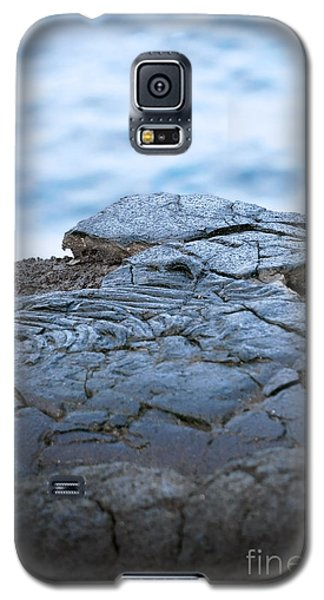 Galaxy S5 Case featuring the photograph Between You And Me by Ellen Cotton