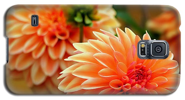 Galaxy S5 Case featuring the photograph Big And Bold by Jeanette C Landstrom