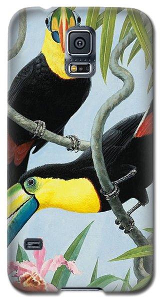 Big-beaked Birds Galaxy S5 Case by RB Davis