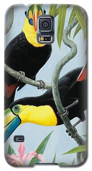 Big-beaked Birds Galaxy S5 Case