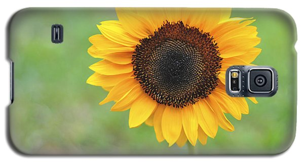 Big Bright Yellow Colorful Sunflower Art Print Galaxy S5 Case