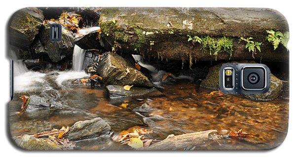 Big Crabtree Creek Near The Blue Ridge Parkway Galaxy S5 Case