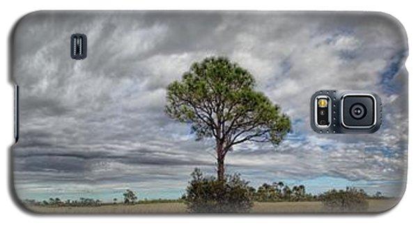 Big Cypress Galaxy S5 Case