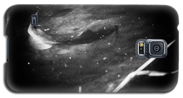 Catfish Galaxy S5 Case - Big Fish Little Fish by Susan Capuano