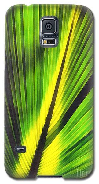 Big Green Palma Leaves  Galaxy S5 Case by Odon Czintos