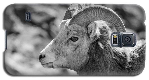 Big Horn Sheep Profile Galaxy S5 Case