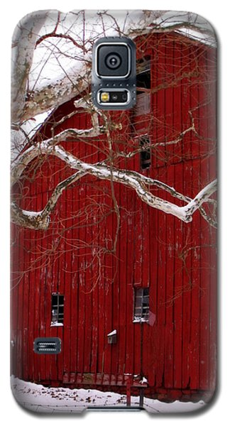 Big Red Bird House Galaxy S5 Case