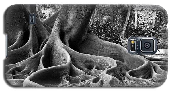 Big Roots Galaxy S5 Case