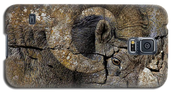 Bighorn Rock Art Galaxy S5 Case by Steve McKinzie