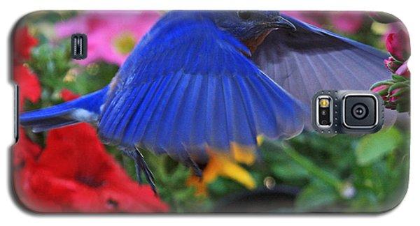 Billy Bluebird Landing Galaxy S5 Case