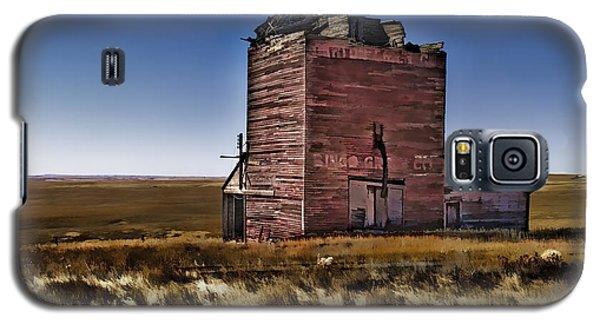 Galaxy S5 Case featuring the painting Bingo Grain Co by Muhie Kanawati